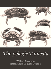 The Pelagic Tunicata