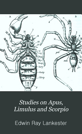 Studies on Apus, Limulus and Scorpio