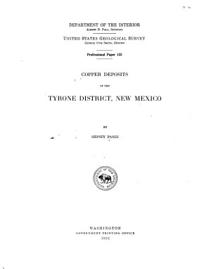 Copper Deposits of the Tyrone District  New Mexico PDF
