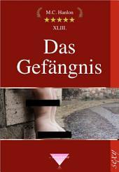 Das Gefängnis: Erotische Kurzgeschichten