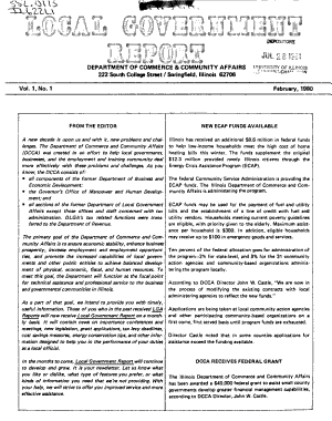 Local Government Report