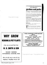 Gardeners Chronicle, the Horticultural Trade Journal