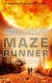 Maze Runner - Udbruddet: Maze Runner 4