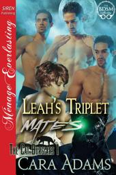 Leah's Triplet Mates [The Cat Burglars 1]