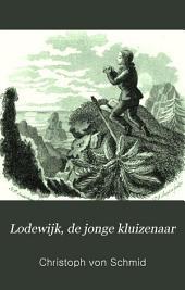 Lodewijk, de jonge kluizenaar: Een verhaal voor de jeugd