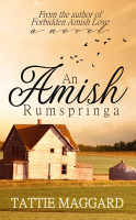 An Amish Rumspringa PDF