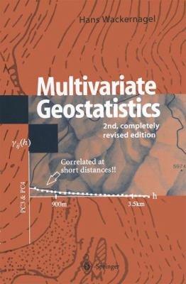 Multivariate Geostatistics PDF