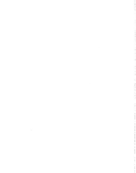 I 94 Blue Water Bridge and Plaza Reconstruction  St Clair County PDF