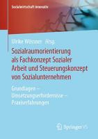Sozialraumorientierung als Fachkonzept Sozialer Arbeit und Steuerungskonzept von Sozialunternehmen PDF