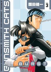 Gunsmith Cats: Burst Volume 3: Volume 3