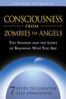 Consciousness from Zombies to Angels PDF