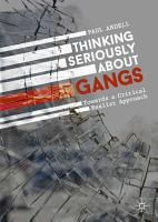 Thinking Seriously About Gangs PDF