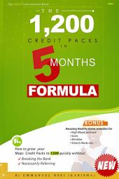 The 1,200 Credit Packs in 5 Months Formula: How to Grow Your Maps Credit Packs to 1,200 Without: Breaking the Bank/Necessarily Referring