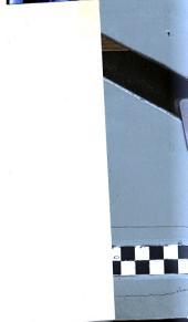 Lettre à un ancien membre du Transvaal-Independence-Committee, à Londres