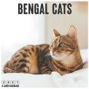 Bengal Cats 2021 Calendar