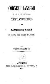 Tetrateuchus: sive, commentarius in sancta Jesu Christi evangelia, Volume 2