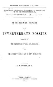 Preliminary Report Upon Invertebrate Fossils Collected by the Expeditions of 1871, 1872, and 1873: With Descriptions of New Species
