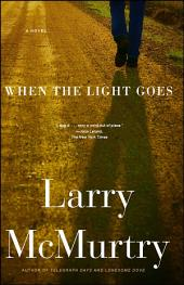 When the Light Goes: A Novel
