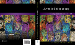 Juvenile Delinquency  Theory  Practice  and Law PDF