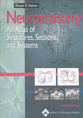 Neuroanatomy PDF
