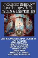 Mazes   Labyrinths PDF