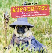 Aufgemopst: Das geheime Leben einer unterschätzten Hunderasse