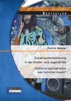 Sozialraumorientierung in der Kinder  und Jugendhilfe  Politische Sparma  nahme oder fachlicher Ansatz  PDF