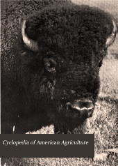 Cyclopedia of American Agriculture: Animals