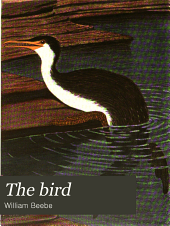The bird: its form and function, Volume 1