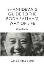 Guide to the Bodhisattva's Way of Life Volume 6