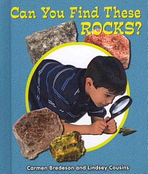 Can You Find These Rocks  PDF
