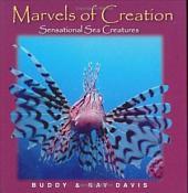 Sensational Sea Creatures