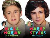 Harry Styles and Niall Horan: the Biography - Choose Your Favourite Member of One Direction