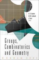 Groups Combinatorics & Geometry