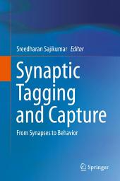 Synaptic Tagging and Capture: From Synapses to Behavior