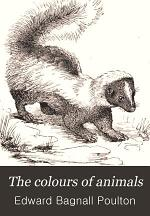 The Colours of Animals