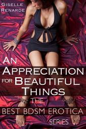 An Appreciation for Beautiful Things: Bondage Erotic Romance