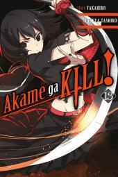 Akame ga KILL!: Volume 13