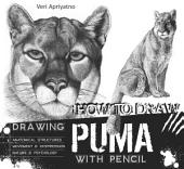 Drawing Puma with Pencil