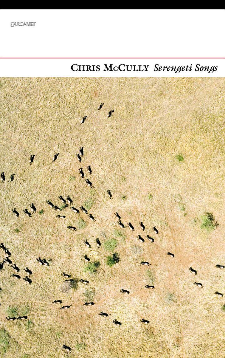 Serengeti Songs