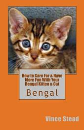 How to Care for and Have More Fun with Your Bengal Kitten and Cat