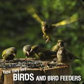 How they live... Birds: Learn All There Is to Know About These Animals!