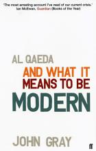 Al Qaeda and What It Means to be Modern PDF
