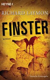 Finster PDF