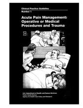 Acute Pain Management: Operative Or Medical Procedures and Trauma Clinical Practice Guideline