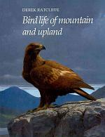 Bird Life of Mountain and Upland