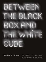 Between the Black Box and the White Cube