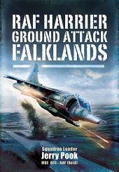 RAF Harrier Ground Attack: Falklands