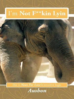 I m Not F  kin Lyin