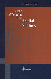 Spatial Solitons